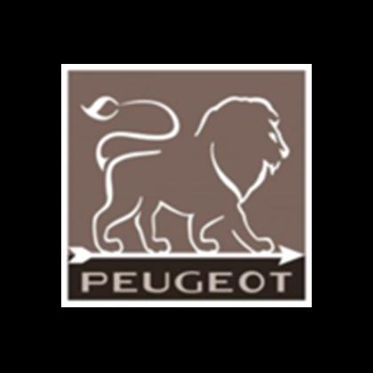 Image du fabricant Peugeot